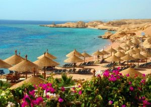 Parolè in libertà: Sharm El Sheikh Febbraio 2014