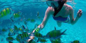 Maldive: sport acquatici e fondali