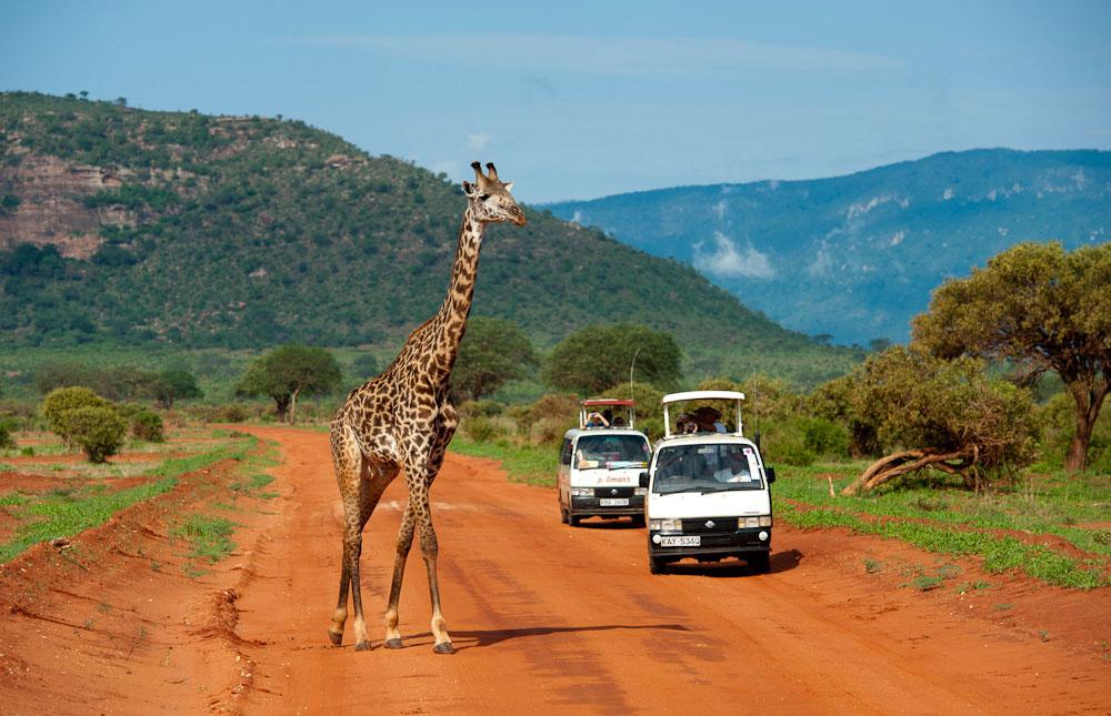 tsavo-east-national-park-015_orig