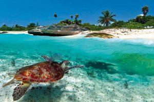 Florida e isole Caraibiche: SpeedVacanze